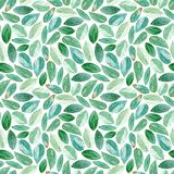 Floral seamless pattern.Eucalyptus branches. Watercolor. Floral seamless pattern.Eucalyptus branches.Image for fabric, paper and other printing and web projects stock illustration