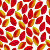 Floral seamless pattern with fallen leaves.  Royalty Free Stock Image