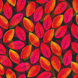 Floral seamless pattern with fallen leaves.  Royalty Free Stock Photography