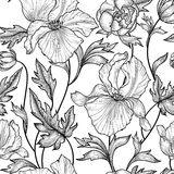 Floral seamless pattern. Flower background. Floral ornamental engraving with iris flowers. Spring flourish garden Stock Photo