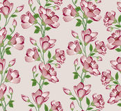 Floral seamless pattern. Flower background. Floral seamless text Royalty Free Stock Image