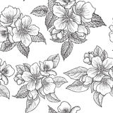 Floral seamless pattern. Flower background. Flourish seamless te Stock Images