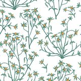 Floral seamless pattern. Flower background. Flourish wallpaper w Stock Photo