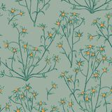 Floral seamless pattern. Flower background. Flourish wallpaper w. Floral seamless pattern. Nature vegetation background. Flourish wallpaper with berries and vector illustration