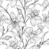 Floral seamless pattern. Flower black and white background. Flor. Als engraving texture with flowers. Flourish sketch tiled wallpaper Stock Image