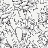 Floral seamless pattern. Flower carnation background. Royalty Free Stock Photography