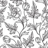 Floral seamless pattern. Flower peony background. Floral tile ornament Stock Photography
