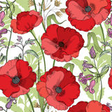 Floral seamless pattern. Flower poppy background. Floral tile ornament Stock Photography