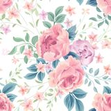 Floral seamless pattern. Flower rose white background. Flourish Stock Images