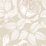 Floral seamless pattern. Flower sketch background. Flourish decor. Floral seamless pattern. Flower background in retro style. Floral seamless texture with Stock Photography