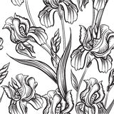 Floral seamless pattern. Flower sketch background. Stock Images
