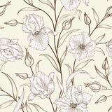 Floral seamless pattern. Flower swirl background. Stock Photos