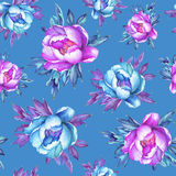 Floral seamless pattern with flowering pink and blue peonies, on blue background. Watercolor hand drawn painting illustration.  Po Royalty Free Stock Images