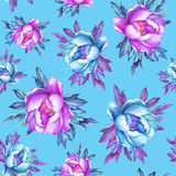 Floral seamless pattern with flowering pink and blue peonies, on blue background. Royalty Free Stock Photo