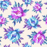 Floral seamless pattern with flowering pink and blue peonies, on peach background. Stock Images
