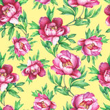 Floral seamless pattern with flowering pink peonies, on  primrose yellow  background. Elegance watercolor hand drawn painting illu Stock Photography