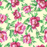 Floral seamless pattern with flowering pink peonies, on yellow background. Royalty Free Stock Photography