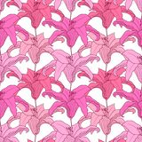 Floral seamless pattern with flowers, pink lilies. Royalty Free Stock Photos