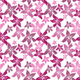 Floral seamless pattern with flowers texture Stock Image