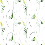 Floral seamless pattern with flowers.  watercolour illustration Royalty Free Stock Photography