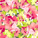 Floral seamless pattern with Flowers wild rose Stock Photo