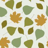 Floral seamless pattern with forest leaves Stock Image