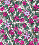 Floral seamless pattern with fucshia and pink Stock Photos