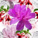 Floral seamless pattern with funchsia,hydrangea,azalea vector illustration stock images