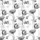 Floral seamless pattern with garden flowers. Watercolor monochrome painting Royalty Free Stock Images