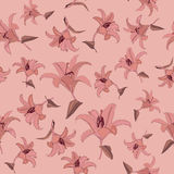 Floral seamless pattern with gentle flowers lily Royalty Free Stock Image