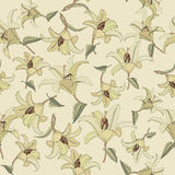 Floral seamless pattern with gentle flowers lily Royalty Free Stock Photography
