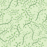 Floral seamless pattern in green colors Royalty Free Stock Photo