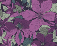 Floral seamless pattern on with hand drawn clematis flowers Stock Photo