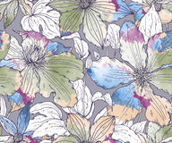 Floral seamless pattern on with hand drawn clematis flowers Royalty Free Stock Image