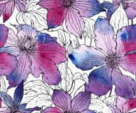 Floral seamless pattern on with hand drawn clematis flowers Royalty Free Stock Photography