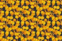 Floral seamless pattern. Hand drawn creative flowers. Artistic background. Abstract herb. Stains of paint. Can be used for wallpaper, textiles, wrapping, print vector illustration