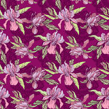 Floral Seamless Pattern with hand drawn flowers, orchids with ma Stock Images