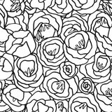 Floral seamless pattern with hand drawn flowers Royalty Free Stock Photos
