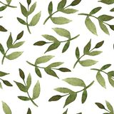 Floral seamless pattern with hand drawn leaves of plants in wate Stock Photography