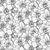 Floral seamless pattern with hand drawn orchid flowers Royalty Free Stock Image
