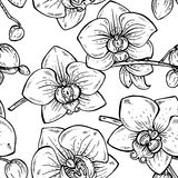 Floral seamless pattern with hand drawn orchid flowers Royalty Free Stock Photos