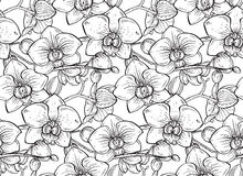 Floral seamless pattern with hand drawn orchid flowers Stock Photos