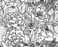 Floral seamless pattern with hand drawn peony flowers and herbs Royalty Free Stock Images
