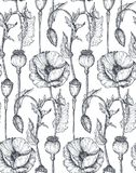 Floral seamless pattern with hand drawn poppy flowers and leaves. Stock Images