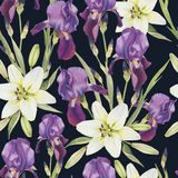 Floral seamless pattern with hand drawn watercolor violet iris and white lilies Royalty Free Stock Photo