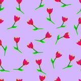 Floral seamless pattern.Hand painted tulips plum. Bright watercolorillustration.Red flowers onpurple background. Royalty Free Stock Photography