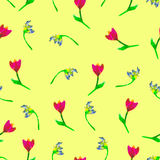 Floral seamless pattern.Hand painted tulips plum. Bright watercolorillustration.Vivid flowers onyellow background. Royalty Free Stock Image