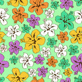 Floral seamless pattern of Hawaiian hibiscus Stock Images