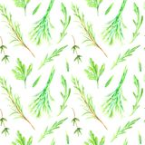 Floral seamless pattern of a herbs and spices. stock illustration