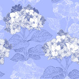 Floral seamless pattern with hydrangea flowers  Stock Photos